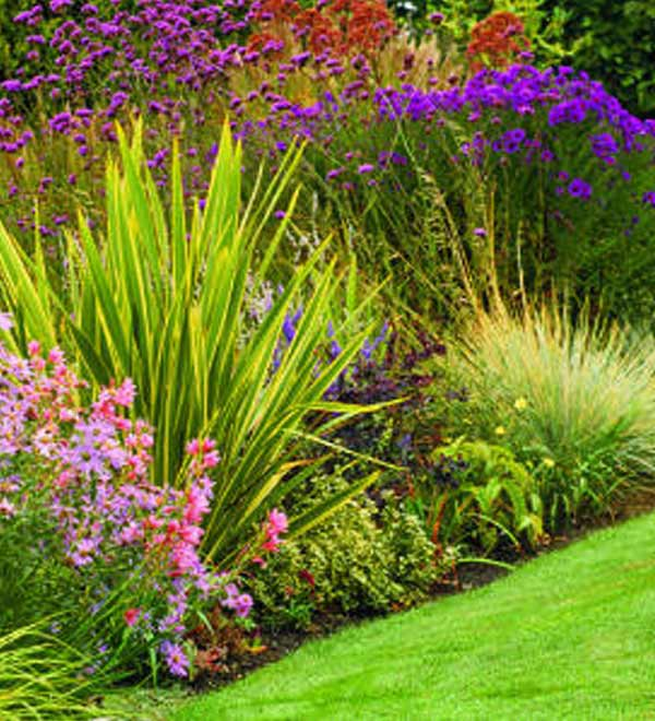 6 Steps to a Water-Wise Garden